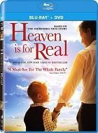 El Cielo Si Existe (2014) BD 25 1080p